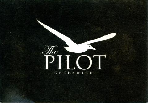 pilot pub001